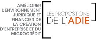 Adie microfinance livre blanc