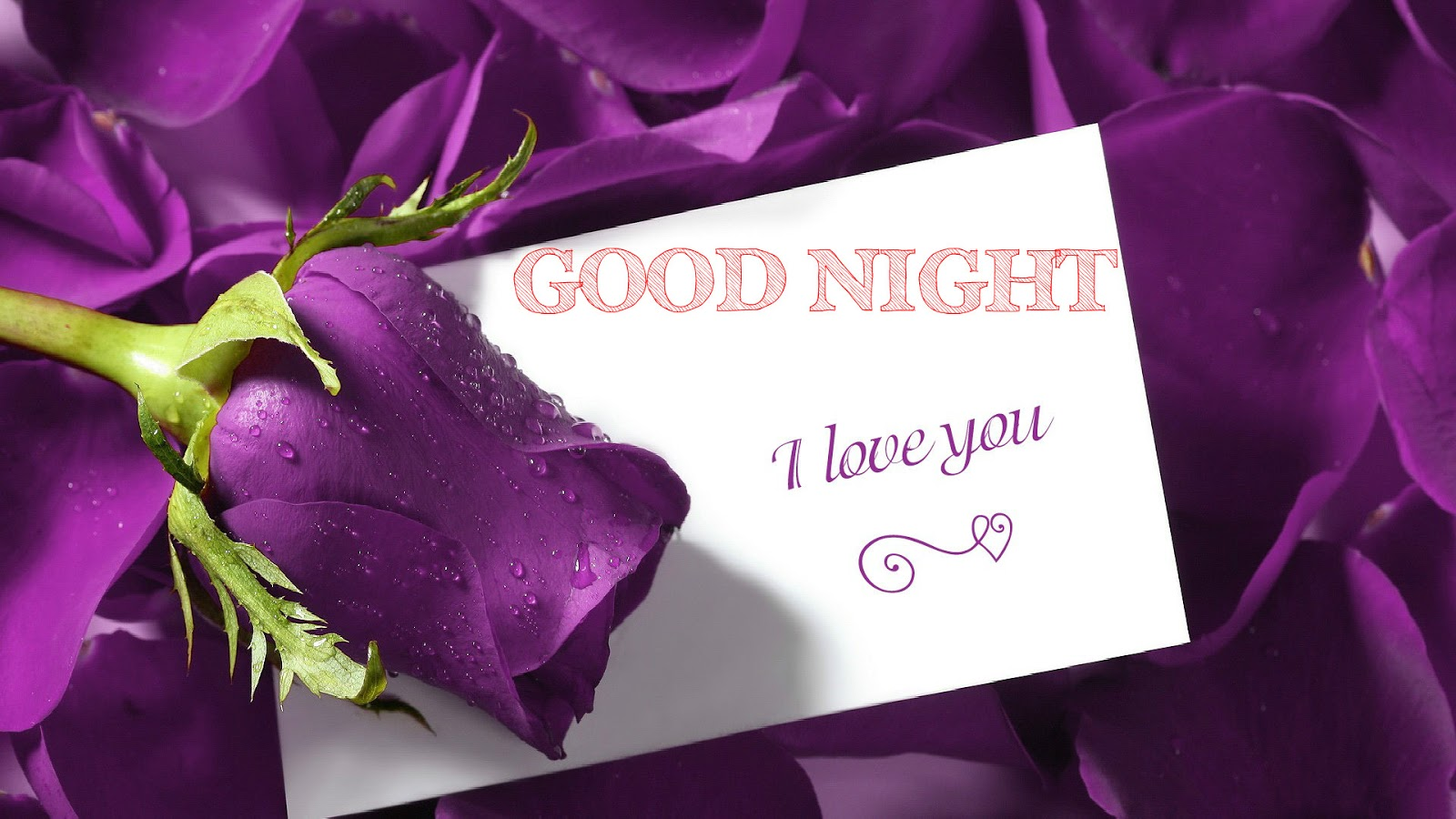 good night wishes cards latest