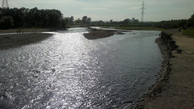 Русло реки Силинки