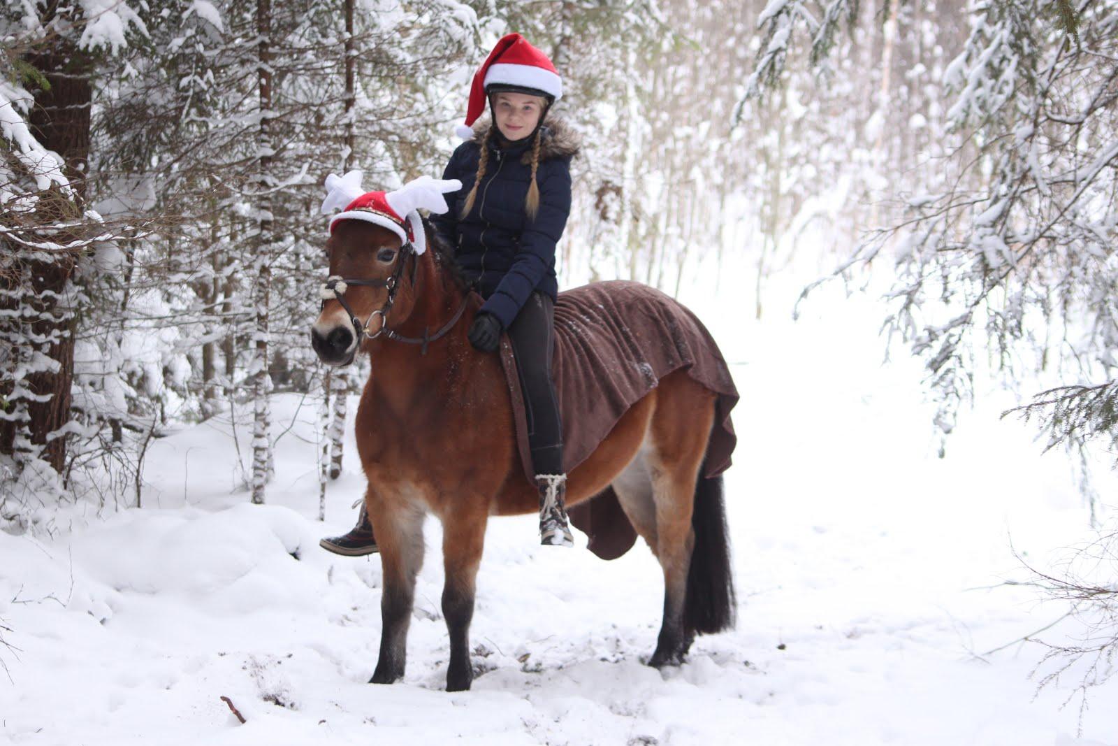 Hyvää joulun odotusta!