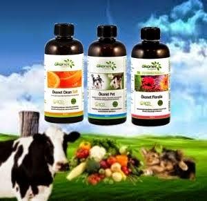 SCD Probiotikus technológia, és termékek