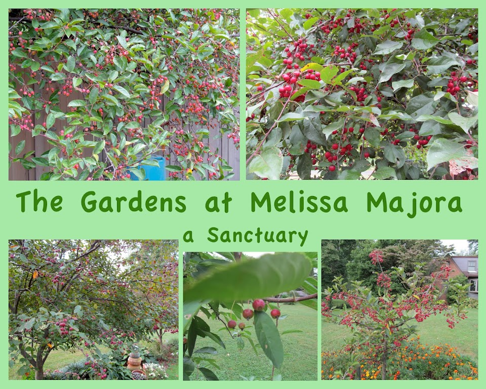 The Gardens at Melissa Majora - a Honeybee Sanctuary