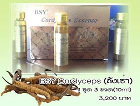 BSY Cordyceps (ถังเช่า)