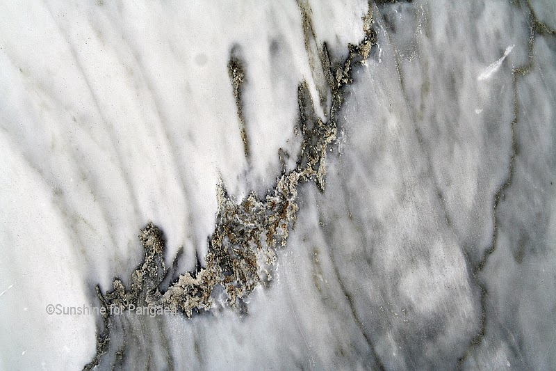 Carrara Marble Macro View
