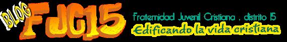 Blog FJC15