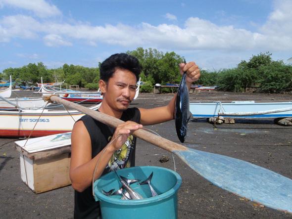 philippines-fish - Lab-as Isda Para Kilaw - Philippine Photo Gallery