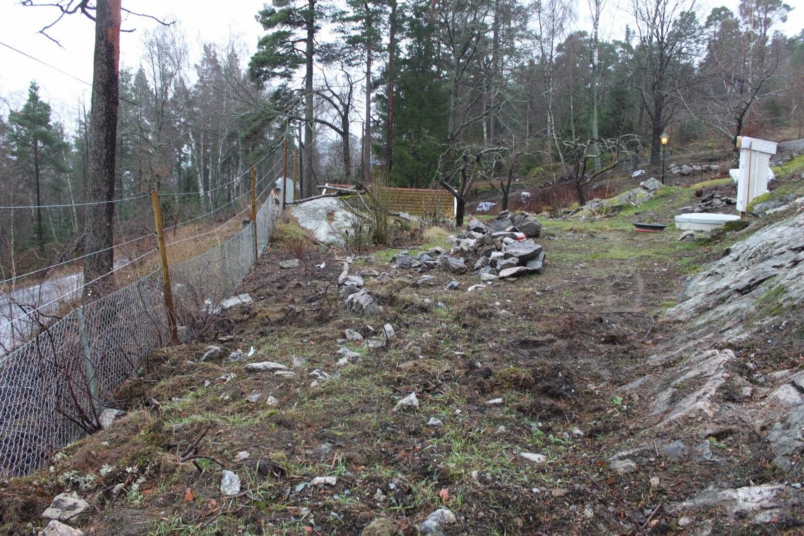 Mina trädgårdar: att göra i trädgården 2014   del 2