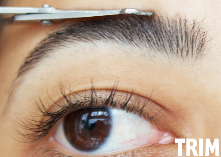 The Perfect Brow in 5 Steps by Le Beauty Girl