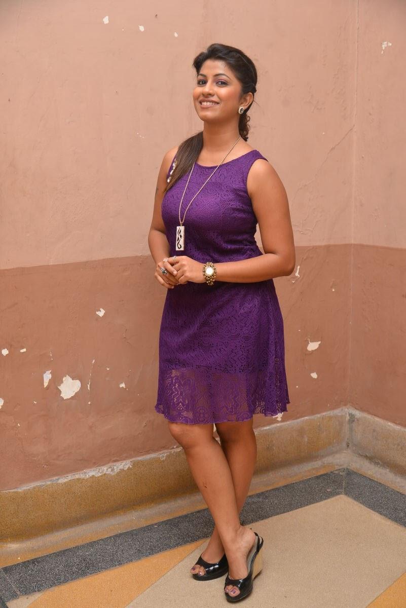 Geethanjali glam pics at SSD audio-HQ-Photo-17