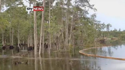 ΒΙΝΤΕΟ – ΣΟΚ: Γιγαντιαία ρουφήχτρα καταπίνει… ολόκληρα δέντρα!