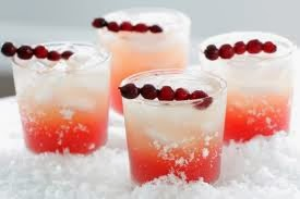 Cranberry & Vanilla Cocktail, Plexus SLim