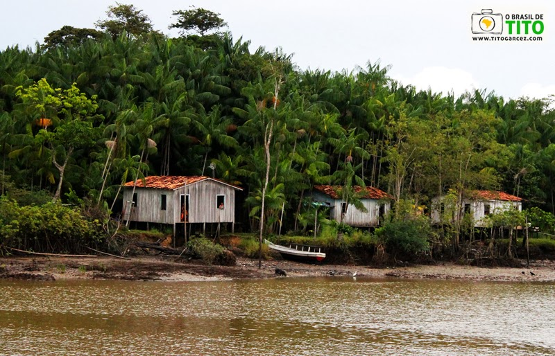 Casas de ribeirinhos na ilha de Paquetá-Açu, na baía do Guajará