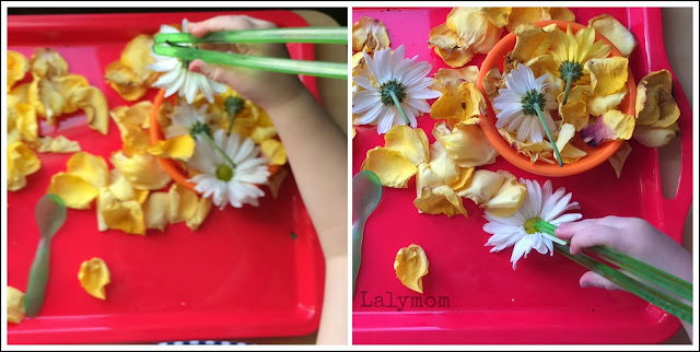 Chopsticks and Flowers: 10 Easy Fine Motor Development Ideas for Preaschoolers Using Flowers from Lalymom