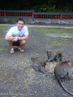 Ubud Monkey Forest Bali Photo 10