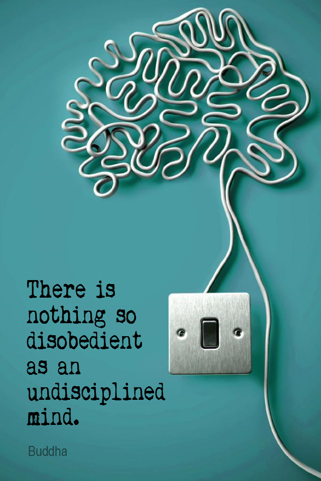 visual quote - image quotation for MIND - There is nothing so disobedient as an undisciplined mind. – Buddha