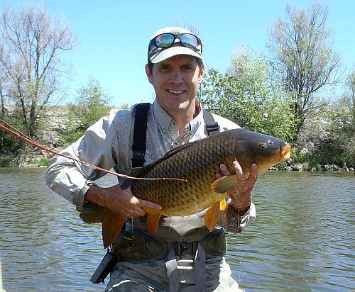 17lb Carp on a Leather Trouser Worm Fly