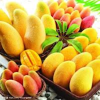 african mango scam