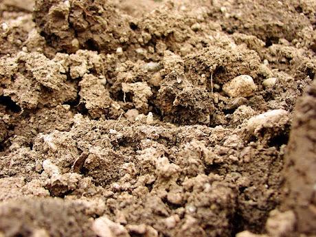 namc montessori sensorial work with soil exploring earth close up of soil