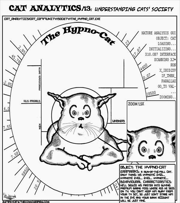 Cat Analytics/13 - The Hypno-Cat