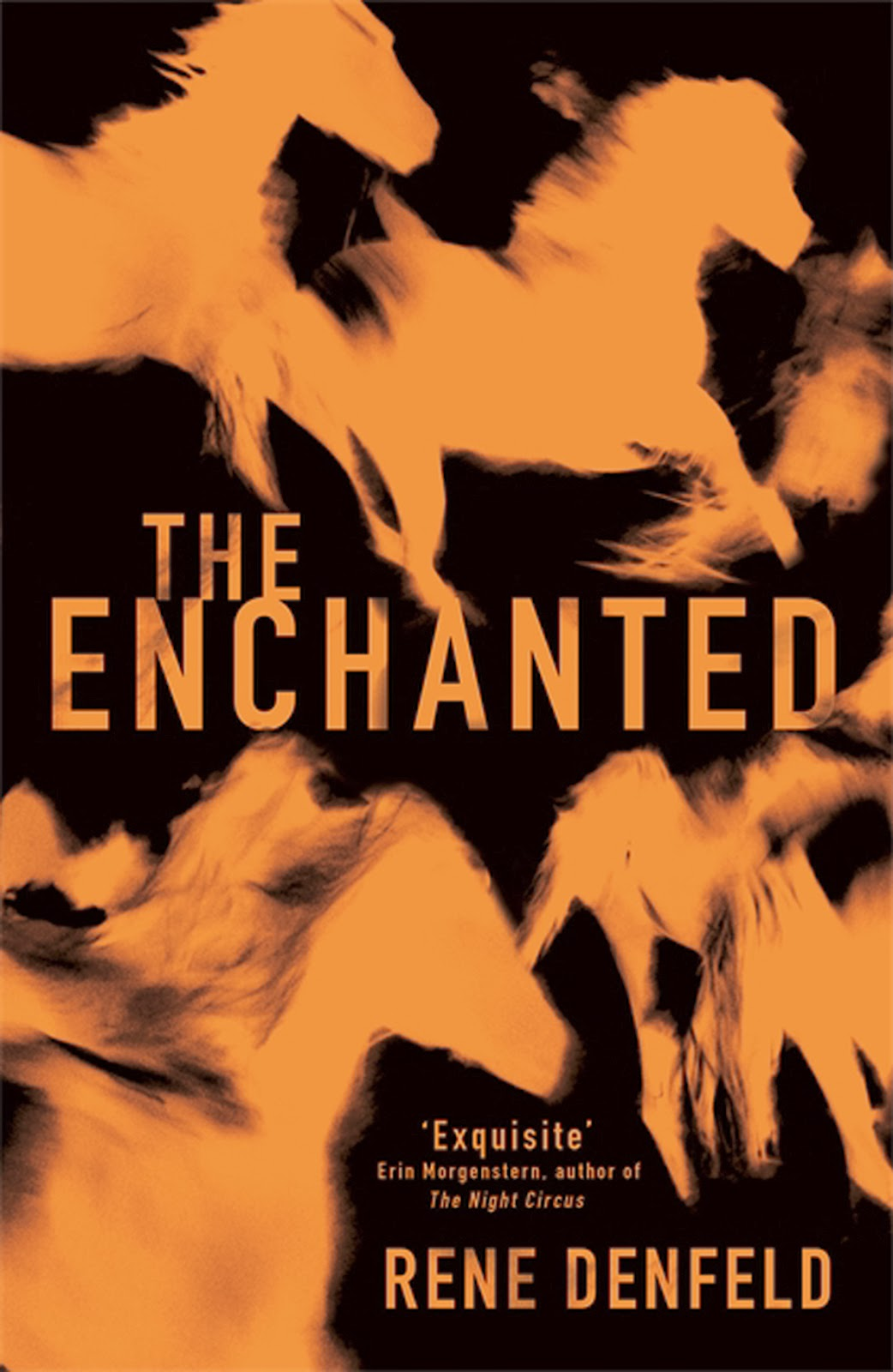 The Enchanted by Rene Denfeld