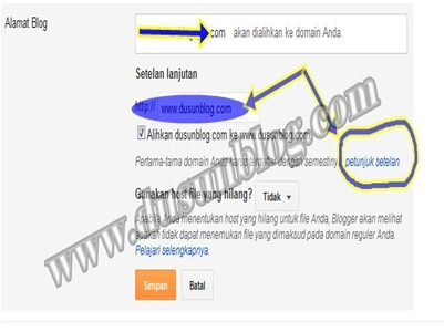 cara mengisi costum domain setting