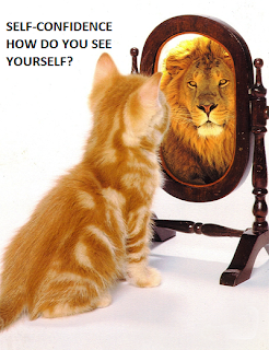 a picture of a yellow cat watching his own figure as a lion on a mirror.