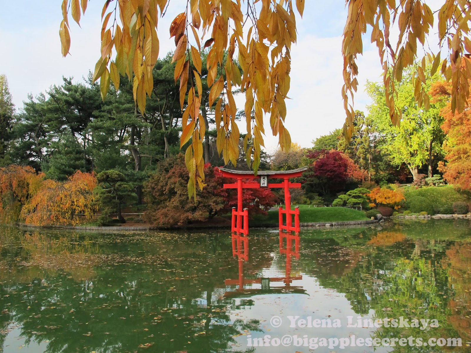 Big Apple Secrets: Japanese Garden in Brooklyn is 100 years!
