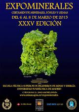 EXPOMINERALES. XXXV EDICIÓN.MADRID