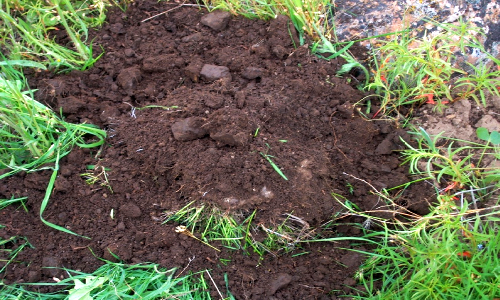 Polymer innovations blog know your soil types for T and t soils