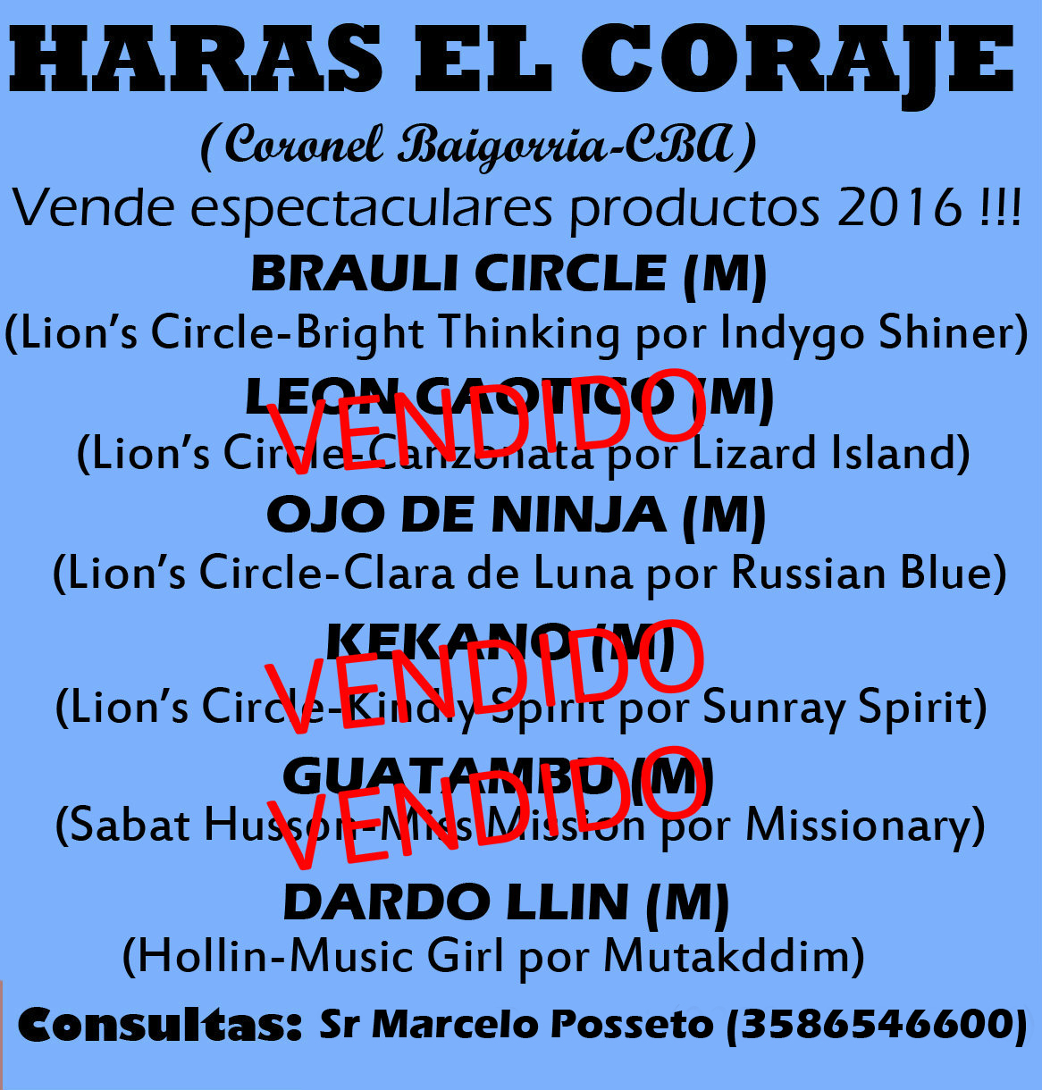 HS EL CORAJE PRODUCTOS 1N