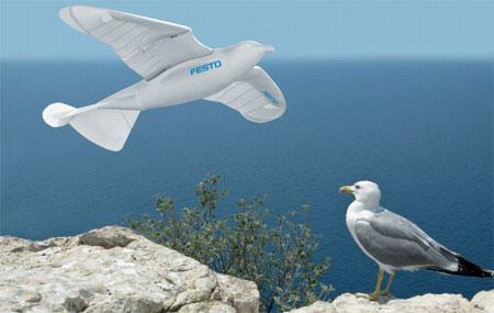 Conheça o incrível um pássaro robô SmartBird