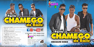 CD Forró Chamego Do Baile – CD 2015