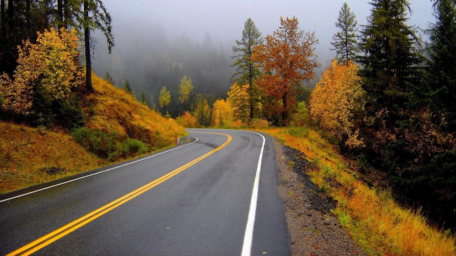 grey En Güzel HD Doğa Resimleri