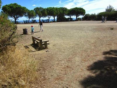 Leisure area in Collserola