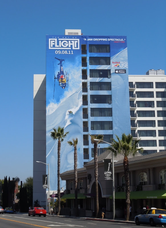 Art of Flight billboard