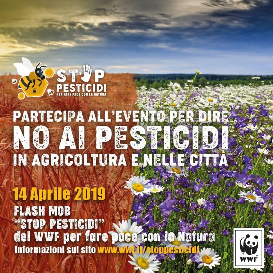 STOP AI PESTICIDI IN AGRICOLTURA E NELLE CITTA'
