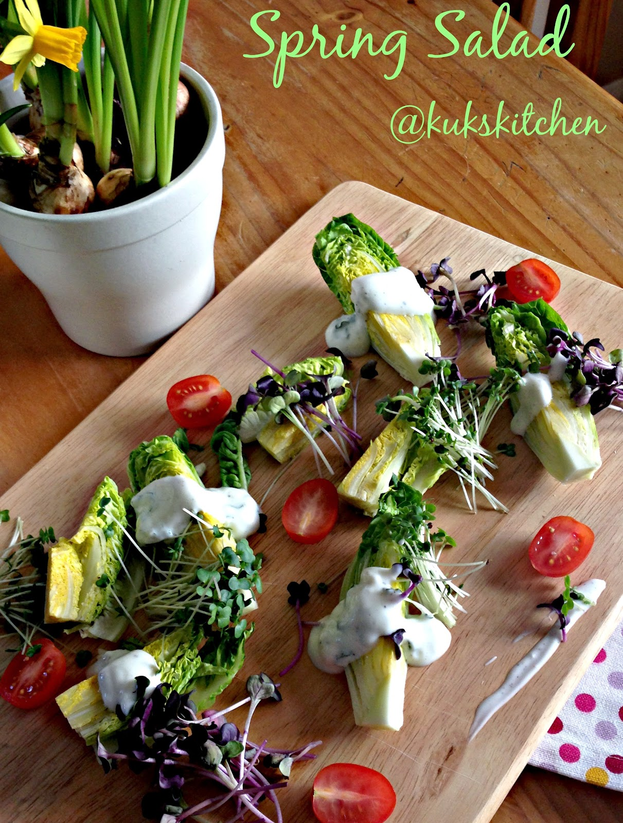 Spring gem lettuce and micro leaves salad with Yoghurt dressing  | Kukskitchen