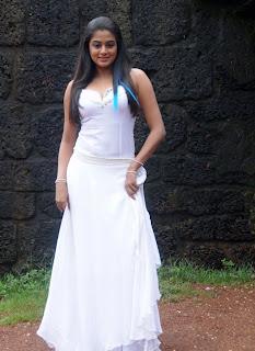 Hot and sexy Priyamani photo shool |southindian actress 33