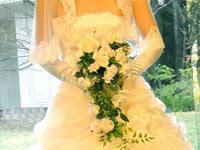 ウェディングドレスとブーケ | ジューンブライド結婚式のイラスト・画像素材