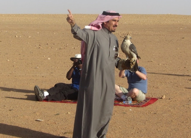 Falconer-Saudi-Arabia