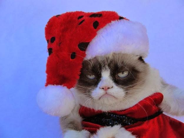 Top HD Wallpapers: Grumpy cat christmas wallpapers 2013