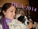 BEA 2014