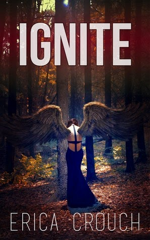 https://www.goodreads.com/book/show/17875224-ignite