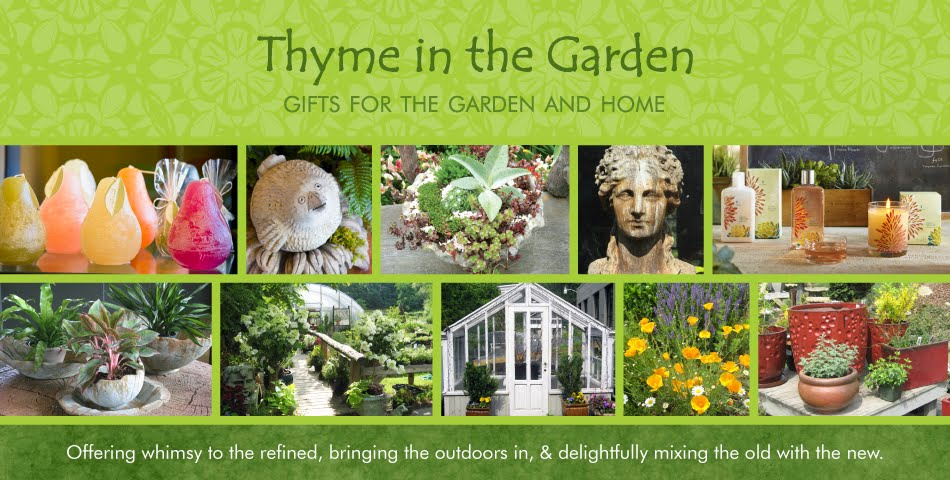 Thyme in the Garden