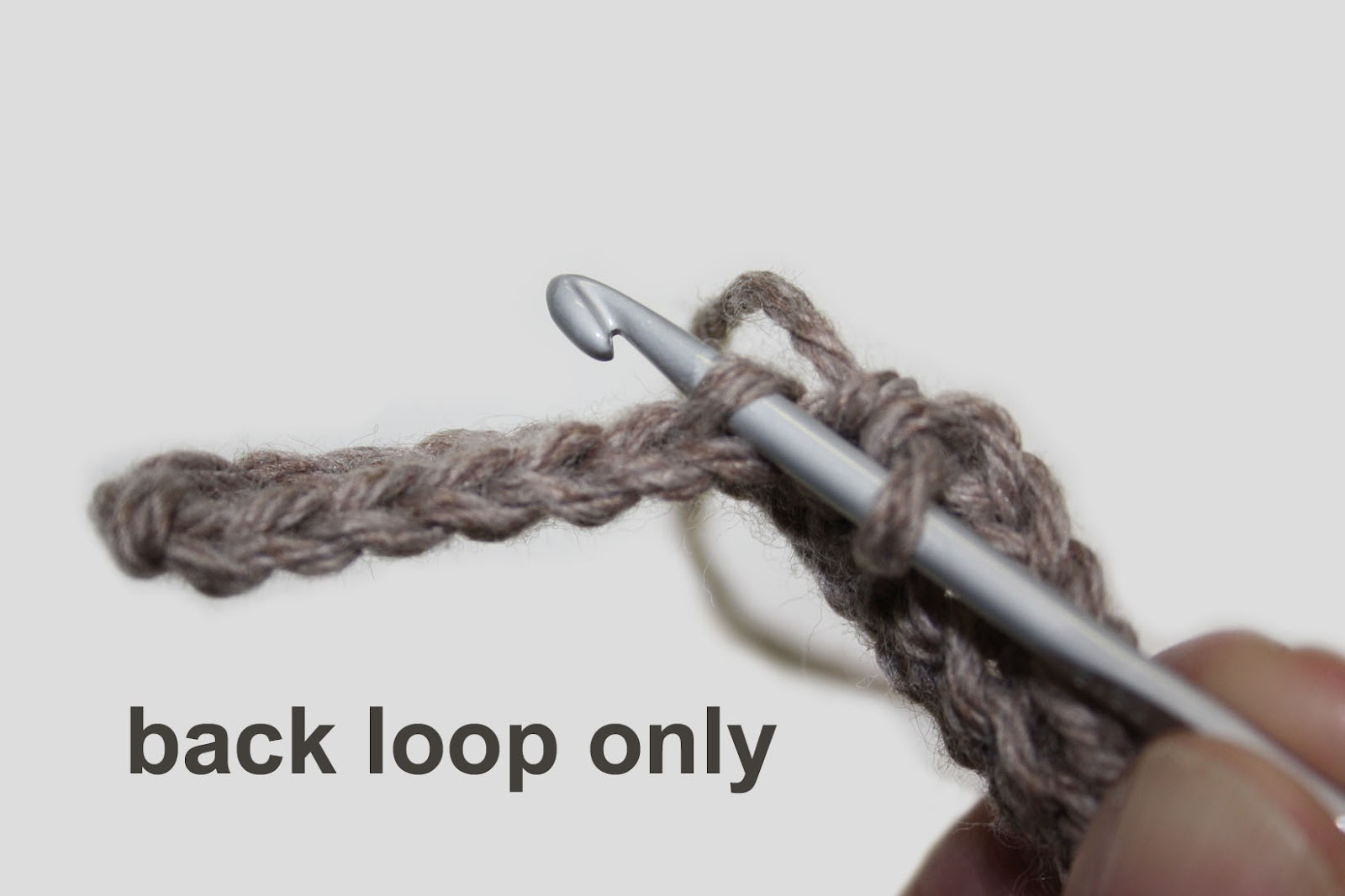 Crocheting In Back Loops Only : work in the back loop only you insert your work through the back loop ...