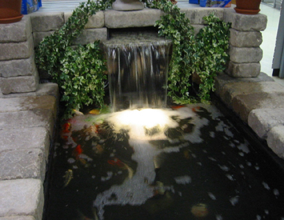 Make koi pond shine with pond lighting koi fish care info for Koi pond underwater lighting
