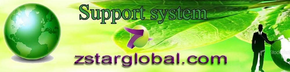 zstarglobal.com