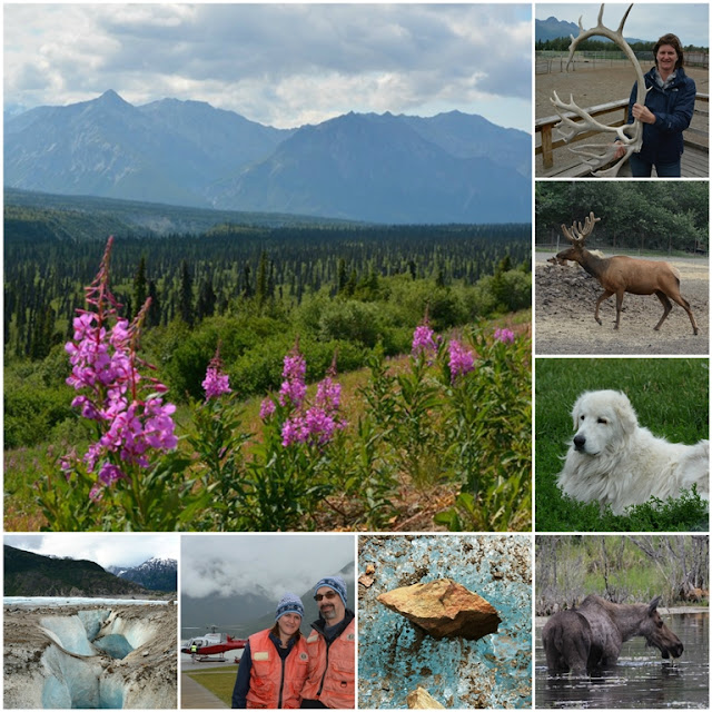 Collage Alaska