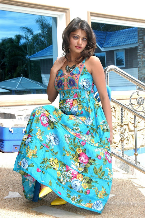 sneha ullal very beautiful photo gallery