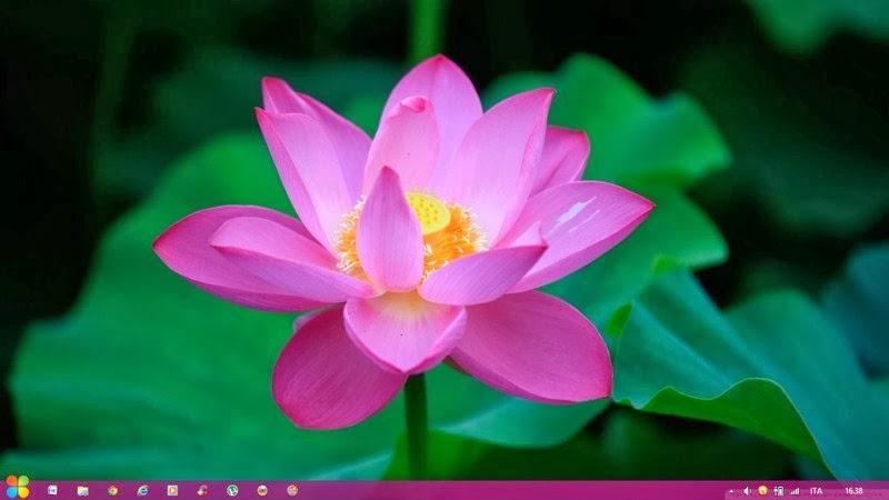 Flower Theme Windows 8 by Adyss88